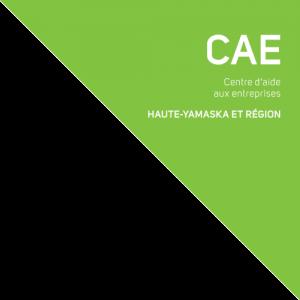 logo CAEHYR